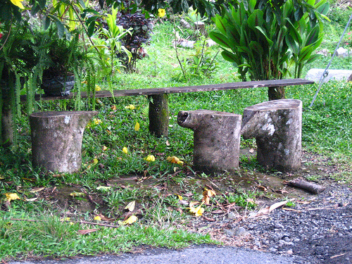 one stump said to another. . .